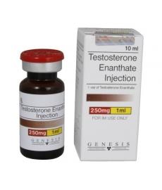 Testosterone Enanthate | Genesis